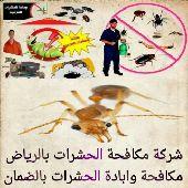 مكافحة الحمام والحشرات والطيور رش مبيدات لنمل