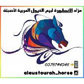 مزاد خيول في الواتسب