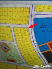 ارض للبيع مخطط طيبة الفرعي 602