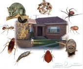 رش مبيدات مكافحة حشرات الصراصير النمل