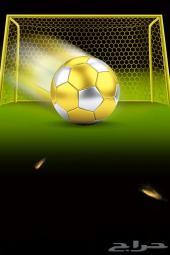 كرة قدم و كرة سلة (معدات تدريب)