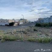 مخطط (1) طريق وادي بن هشبل