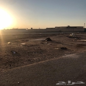 ارض للبيع في الرمال