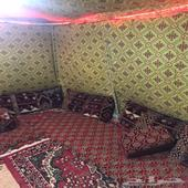 مخيم الايجار بساعه