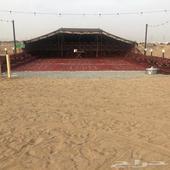 مخيم جديد وكبير خلف كبري السنابل