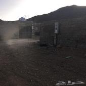 مزرعة للبيع إنزين النور 5 00  تحديد موقع الرسائل