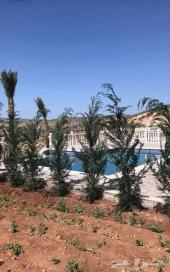 مزرعة للبيع في الاردن عمان الكمشه