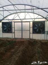 بيوت زراعية مكيفة
