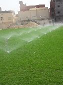 عشب صناعي ونجيله طبيعي تنسيق حدائق وفلل وسترا