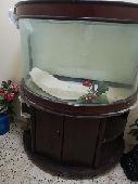 حوض سمك كبير اخو الجديد للبيع