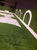 تنسيق حدائق وفلل الاستراحات وجميع الورود والأ
