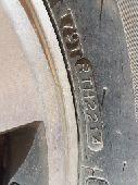 جنوط اف جي 2010