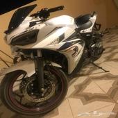 ابو جبعا ريس 250cc