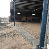 أرض للإيجار في وادي بن هشبل