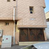 شقه لايجار في محافظة أملج