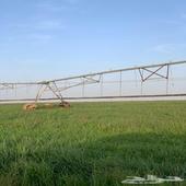 مزرعة للبيع حول شري