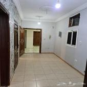 شقة للإيجار (( عوائل )) بسعر رمزي
