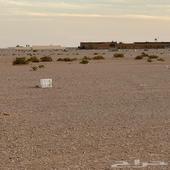 ارض بحي الخير مخطط3539