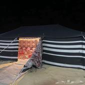 مخيم شبابي