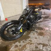 Harley Davidson Night Rod 2013