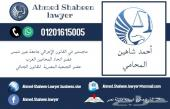 مستشار قانوني ومحامي في مصر