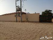 مزرعة طريق مكة المكرمة في تبراك