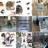 تنظيف خزانات منازل مجالس رش مبيدات حشرات