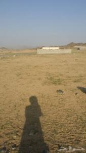 قطعتين ارض للبيع
