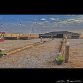 مخيم للايجار في رفحاء