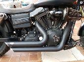 هارلي فات بوب للبيع   Harley Fatbob for sale