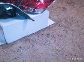 القصيم - اسطبات هوندا اكورد 2010