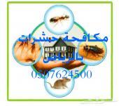 شركة مكافحة الحشرات بالرياض سعر 250 ريال