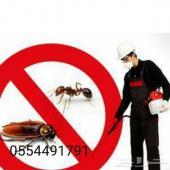 شركة رش مبيد ومكافحة الحشرات والصرصيروالنمل