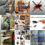 شركة تنظيف منازل مجالس بالرياض رش مبيد حشرات