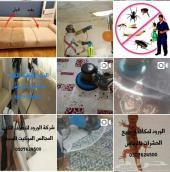 رش مبيدات حشرات بالرياض تنظيف خزانات و منازل