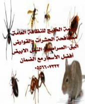 شركة مكافحة حشرات مع الضمان