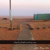 مخيم واستراحة للايجار اليومي الذيبية طريق المدينة العسكرية