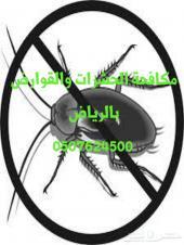 رش مبيدات مكافحة حشرات تنظيف كنب سجاد خزانات