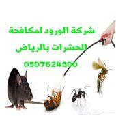 شركة مكافحة حشرات رش مبيد تسليك مجاري