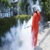 مكافحة حشرات في الرياض خدمات نظافة رش مبيدات