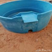 مسبح فيبر صغير