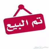 ثور فحل بقر بلدي العمر 2 سنه و4 شهور