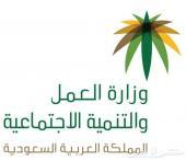خدمات التعقيب (معقب في جدة)