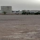 للاستثمار السنوى مزرعه قرب الرياض