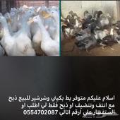 ارانب وبط للبيع الموقع محفضة الكامل قرية حرت الشرع