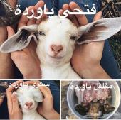 م ط ل و ب جيب لكزس 2003 ... 2007