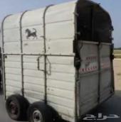 عربة خيل نقل لجميع المدن