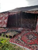 مخيم روضة خريم للايجار اليومي والاسبوعي