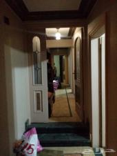 شقة 270م القاهرة م نصر الحي السادس كود 00112