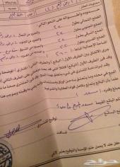 قطعتين ارضين في عشيره- مخطط العبود- الخليج